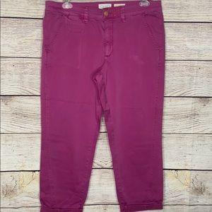 Chino by Anthropologie Magenta Relaxed Cargo